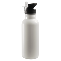 20 oz. Stainless Steel Water Bottle, White, Straw Top